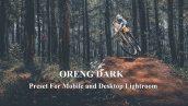 پریست لایت روم ORENG DARK Preset For Mobile and Desktop Lightroom