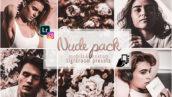 10 پریست لایت روم دسکتاپ و موبایل Nude Presets Instagram Pc and Mobile