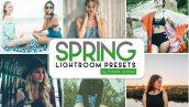 100 پریست لایت روم دسکتاپ فصل بهار Spring Lightroom Presets