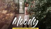 دانلود 25 پریست لایت روم تم رنگی Moody Lightroom Presets Bundle