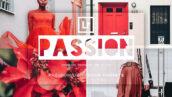 پریست لایت روم دسکتاپ و موبایل تم احساس عمیق Passion Lightroom Presets