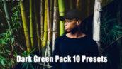 پریست لایت روم دسکتاپ و موبایل تم سبز تیره Dark Green Pack 10 Presets
