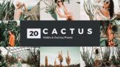 پریست لایت روم و پریست کمرا راو و لات رنگی کاکتوس Cactus Lightroom Presets and LUTs (1)