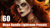 پکیج 60 پریست لایت روم حرفه ای Mega Bundle Lightroom Presets