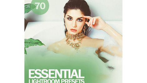 70 پریست لایت روم و افکت رنگی Essential Lightroom Presets