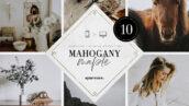 پریست لایت روم دسکتاپ و موبایل تم زیست شناسی Mahogany & Maple Lightroom Presets