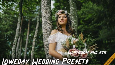 پریست لایت روم عروسی و پریست کمرا راو Loweday Wedding Presets - LR and ACR
