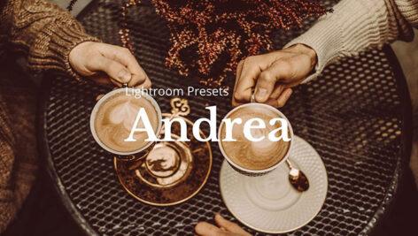 10 پریست لایت روم حرفه ای دسکتاپ Andrea Lightroom Presets