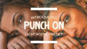 پریست لایتر وم حرفه ای دسکتاپ و موبایل Punch On Lightroom Preset