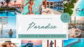 پریست لایت روم حرفه ای تم بهشت تابستانی Paradise Summer Presets