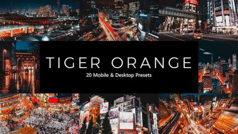 پریست لایت روم و پریست کمرا راو و لات رنگی ببر نارنجی Tiger Orange Lightroom Presets & LUTs
