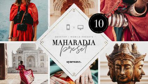 10 پریست لایت روم دسکتاپ و موبایل تم هند Maharadja Lightroom Presets Bundle
