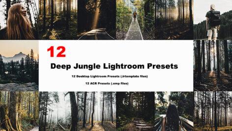24 پریست لایت روم و Camera Raw تم جنگل Deep Jungle Lightroom Presets