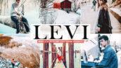 40 پریست لایت روم و کمرا راو و اکشن فتوشاپ Levi Pro Lightroom Presets