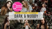 60 پریست لایت روم سینمایی و پریست کمرا راو فتوشاپ Dark and Moody Lightroom Presets