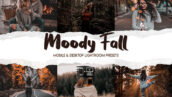 60 پریست لایت روم پاییزی و پریست کمرا راو فتوشاپ Moody Fall Lightroom Presets