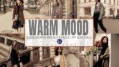 12 پریست لایت روم حرفه ای مد روز Warm Mood Lightroom Desktop and Mobile Presets
