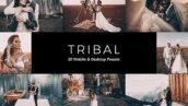 20 پریست لایت روم عروسی و پریست کمرا راو و لات رنگی Tribal Lightroom Presets & LUTs