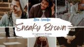 30 پریست لایت روم حرفه ای تم قهوه ای Sneaky Brown Lightroom Presets