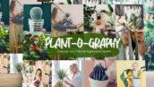32 پریست لایت روم دسکتاپ و موبایل تم بوته زار Plant-o-graphy Lightroom Presets