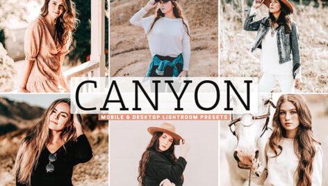 40 پریست لایت روم و کمرا راو و اکشن فتوشاپ تم شکلاتی Canyon Pro Lightroom Presets (1)