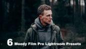 12 پریست رنگی لایت روم دسکتاپ و موبایل تم سینماتیک Moody Film Pro Lightroom Presets