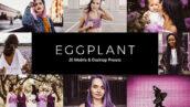 20 پریست لایت روم و پریست کمرا راو و لات رنگی تم رنگی بادمجانی Eggplant Lightroom Presets & LUTs