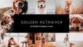 20 پریست لایت روم و پریست کمرا راو و لات رنگی تم سگ وفادار Golden Retriever LR Presets