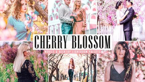 34 پریست لایت روم و Camera Raw و اکشن فتوشاپ تم شکوفه گیلاس Cherry Blossom Lightroom Presets