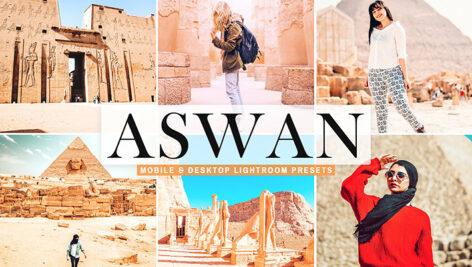 40 پریست لایت روم و کمرا راو و اکشن فتوشاپ تم شهر آسوان مصر Aswan Lightroom Presets