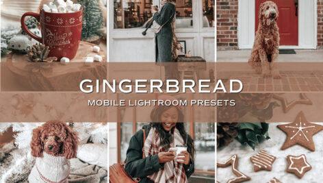 10 پریست لایت روم حرفه ای تم رنگی رنجبیل Gingerbread Lightroom Presets