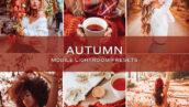 10 پریست لایت روم حرفه ای پاییز Autumn Lightroom Presets