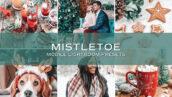 10 پریست لایت روم مواد حرفه ای تم تعطیلات Holiday Lightroom Presets