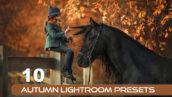 10 پریست پاییزی لایت روم حرفه ای Autumn Lightroom Presets