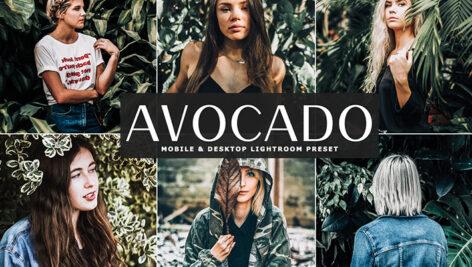 20 پریست لایت روم حرفه ای تم آوکادو Avocado Mint Mood Lightroom Presets