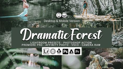20 پریست لایت روم حرفه ای تم جنگل دراماتیک Dramatic Forest Presets