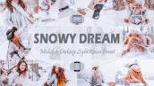 20 پریست لایت روم زمستان تم رویای برفی Snowy Dream Winter Lightroom Presets