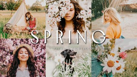 24 پریست رنگی لایت روم حرفه ای فصل بهار SOFT MOODY VIBRANT LIGHTROOM PRESETS