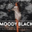30 پریست لایت روم و پریست کمرا راو فتوشاپ تم تیره Moody Black Lightroom Presets