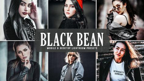 40 پریست لایت روم و کمراراو و اکشن کمراراو فتوشاپ تم لوبیای سیاه Black Bean Pro Lightroom Presets