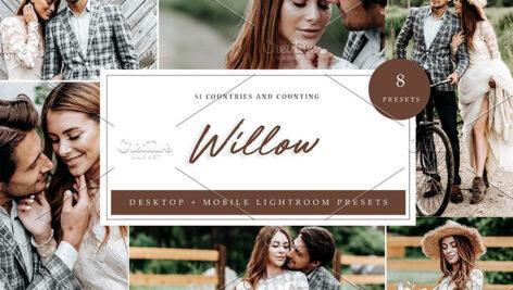 24 پریست رنگی لایت روم حرفه ای Willow Lightroom Presets