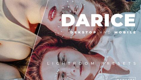 خرید 20 پریست رنگی لایت روم حرفه ای Darice Lightroom Preset