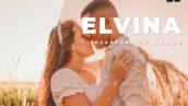 دانلود 20 پریست رنگی حرفه ای لایت روم Elvina Lightroom Preset
