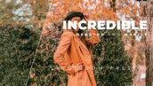 20 پریست رنگی لایت روم حرفه ای تم افسانه ای Incredible Lightroom Preset