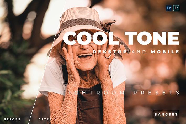 20 پریست رنگی لایت روم حرفه ای تم حال خوب Cool Tone Lightroom Preset