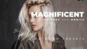 20 پریست رنگی لایت روم حرفه ای تم مجلل Magnificent Lightroom Preset