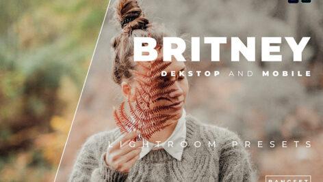 20 پریست رنگی لایت روم حرفه ای عکس پرتره Britney Lightroom Preset