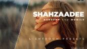 20 پریست لایت روم پرتره حرفه ای جدید Shahzaadee Lightroom Preset