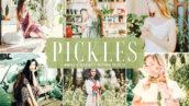 40 پریست لایت روم و پریست کمرا راو و اکشن فتوشاپ Pickles Lightroom Presets