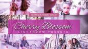 80 پریست لایت روم و کمرا راو و اکشن فتوشاپ و لات رنگی تم شکوفه گیلاس Cherry Blossom Lightroom Presets